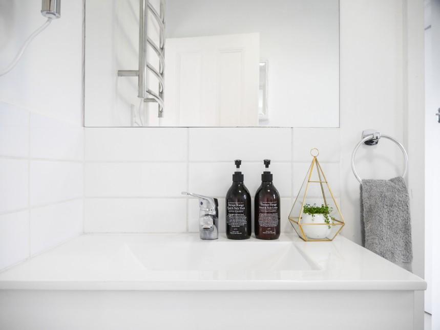 Terrarium in bathroom