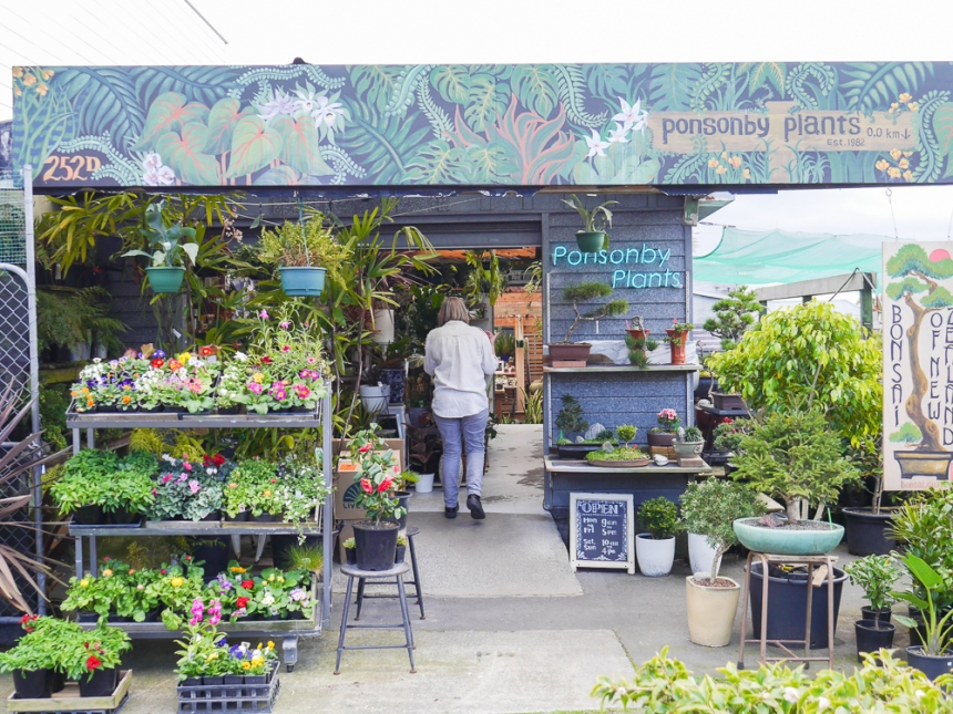 Auckland Plant stores